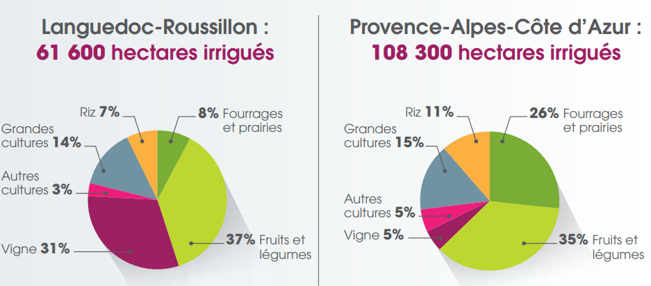 image Nombre_dhectare_cultivs_irrigus_en_rgion_LanguedocRoussillon_et_PACA_AIRMF_2015.png (0.1MB)