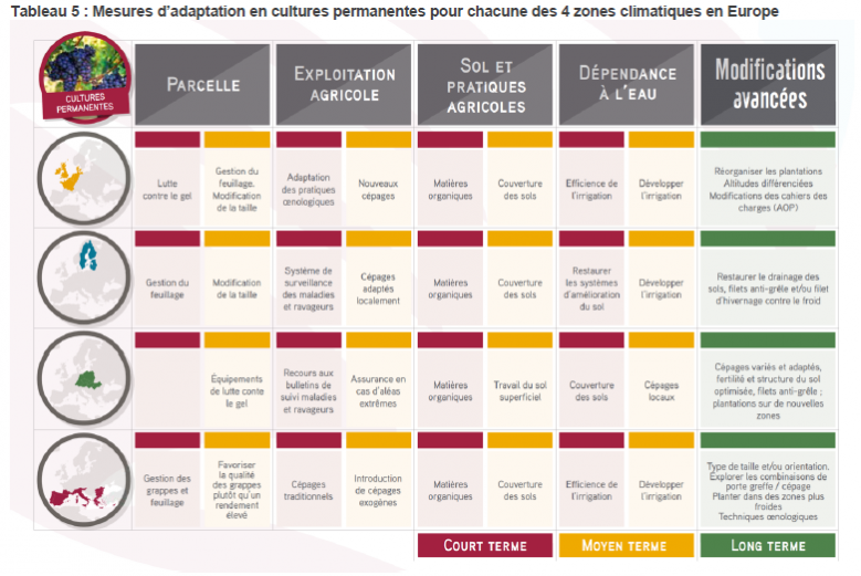 image Mesures_adaptation_cultures_perennes_europe.png (0.2MB)