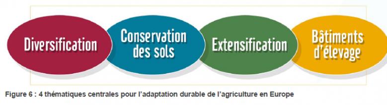 image Quatres_pistes_adaptation_agriculture_UE_source_Agradapt.png (0.1MB)