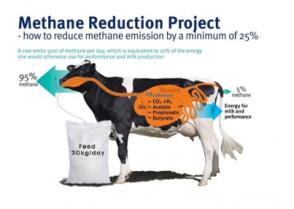image Methane.png (0.1MB)