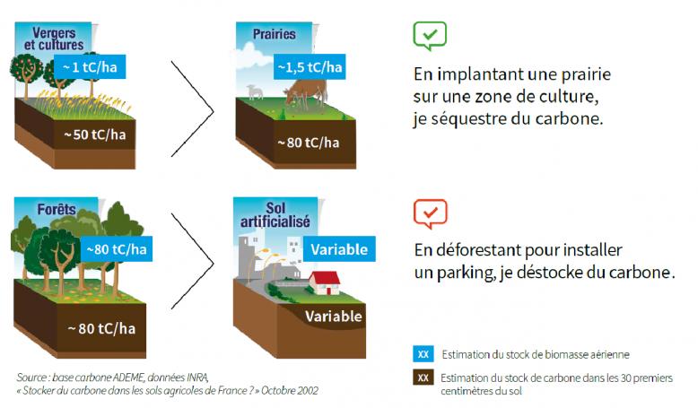 image Evolution_stock_carbone.png (0.3MB)