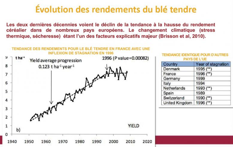 image Evolution_des_rendements_du_bl_tendre.png (0.8MB)