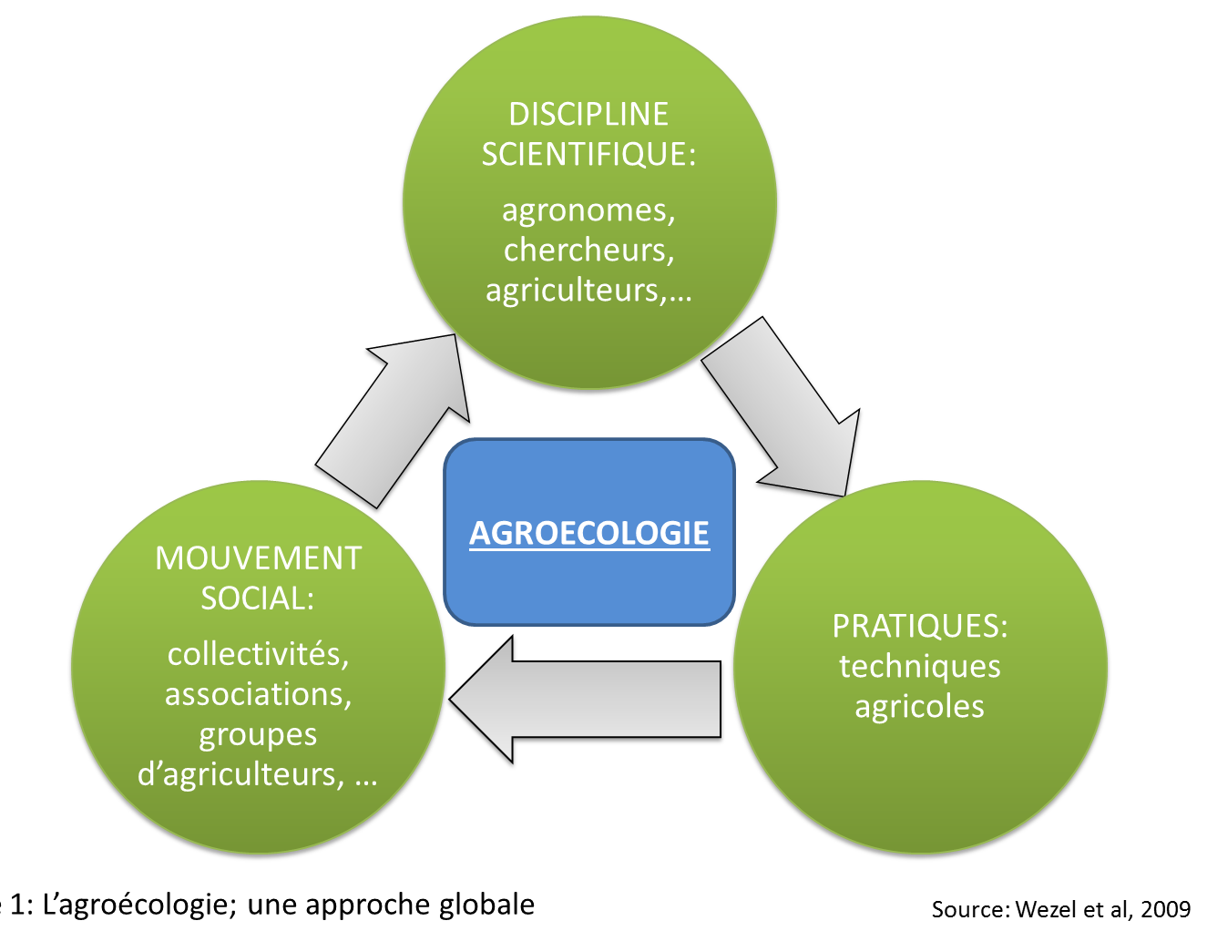 image lagroecologie_une_approche_globale.png (0.1MB)