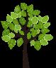 image Image11.png (0.6MB) Lien vers: AgroForesterie
