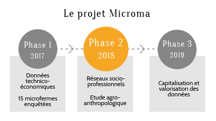 phases micrMA