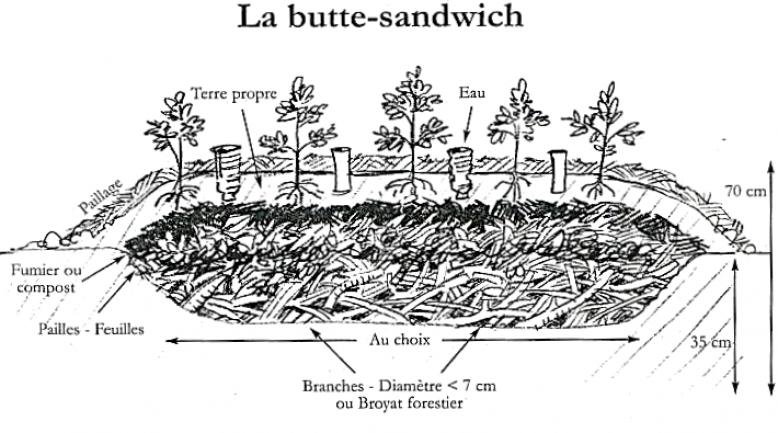 butteS Lien vers: http://www.coeurdechaman.com/butte-sandwich/